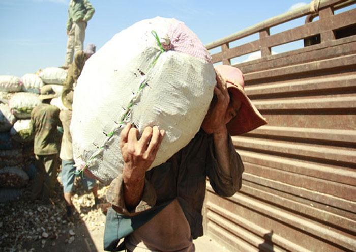 Thuê bốc vác tại Quảng Ninh