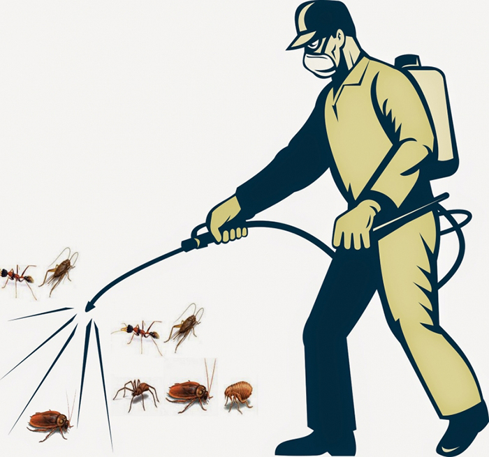 Dịch vụ diệt côn trùng, phun muỗi diệt mối
