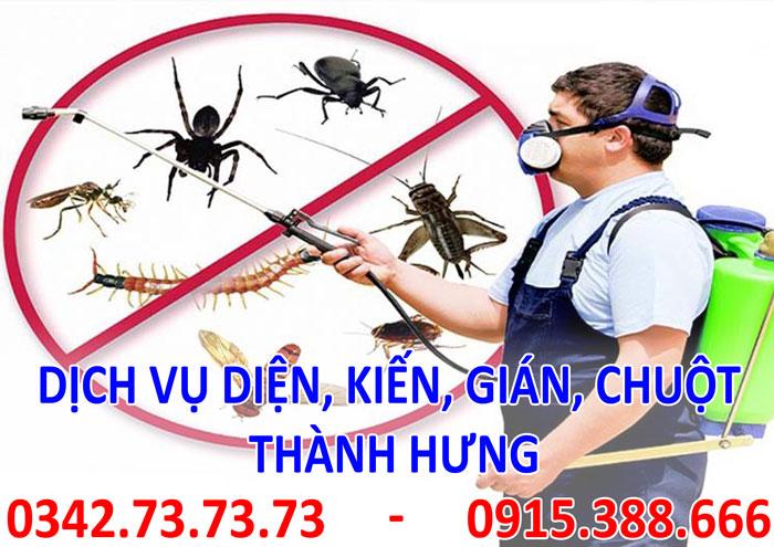 Dịch vụ diệt, kiến, gián, mối, chuột