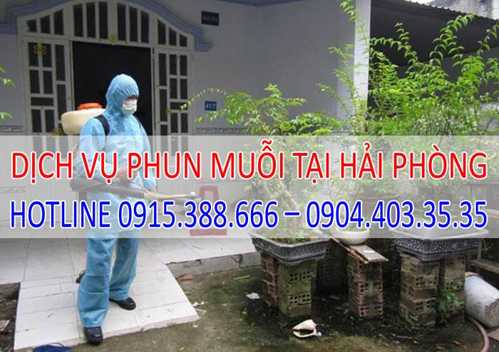 Dịch vụ phun muỗi tại Hải Phòng giá rẻ