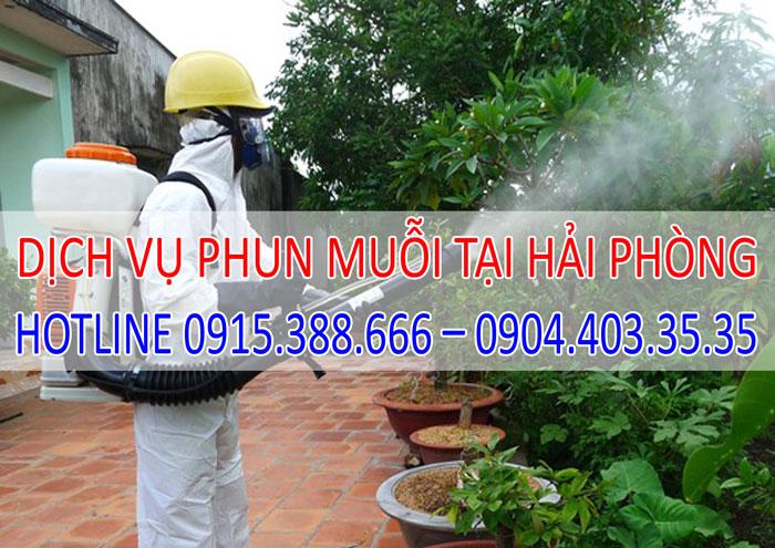 Dịch vụ phun muỗi tại Hải Phòng